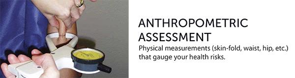 Anthropometric Assessment Calgary Canada